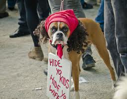 The one possible exception to dressing up your dog!