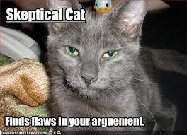 skepticalcat