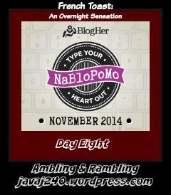 NaBloPoMo14DayEight