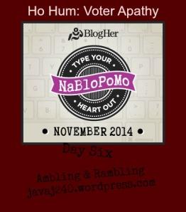 NaBloPoMo14DaySix