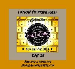 NaBloPoMo14DayTwentyFive